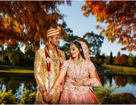 indian wedding videographer grand paradiso